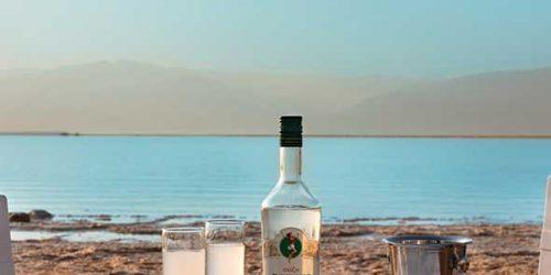 חוף הים במלון מילוס ים המלח